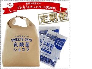 乳酸菌ショコラ定期便(840g ※標準210枚入)