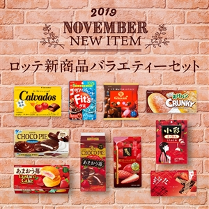 【送料込】新商品バラエティセット(11月)