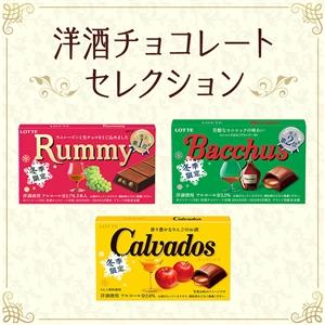 【送料込】洋酒チョコセレクション2019